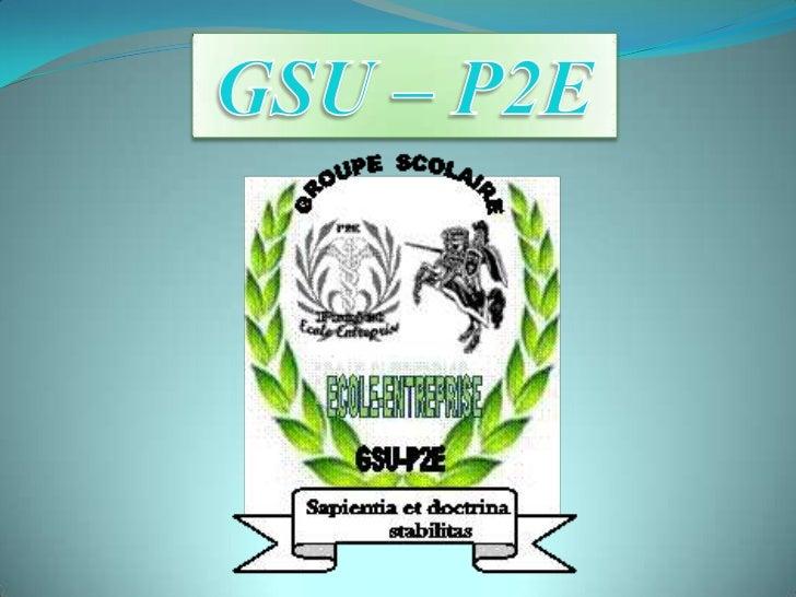 GSU-P2E