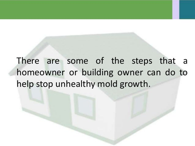 Tips On Prevent Mold Growth