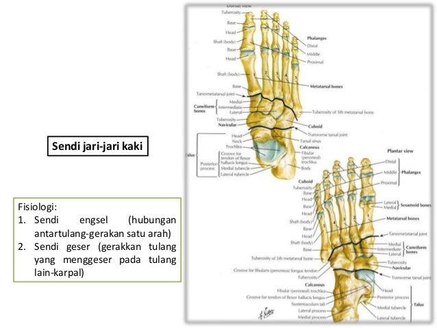 Arthritis Diet.