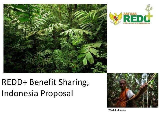 REDD+ Benefit Sharing,Indonesia Proposal                         WWF-Indonesia