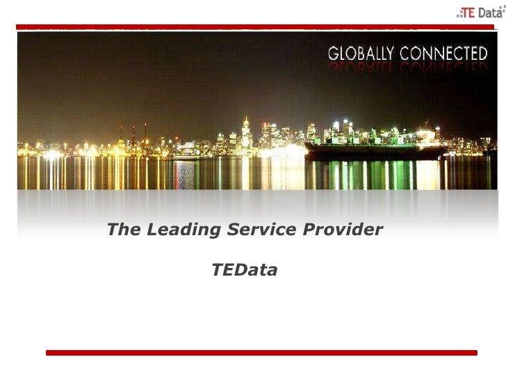 The Leading Service Provider          TEData