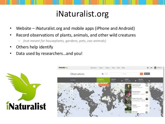 iNaturalist.org • Website – iNaturalist.org and mobile apps (iPhone and Android) • Record observations of plants, animals,...