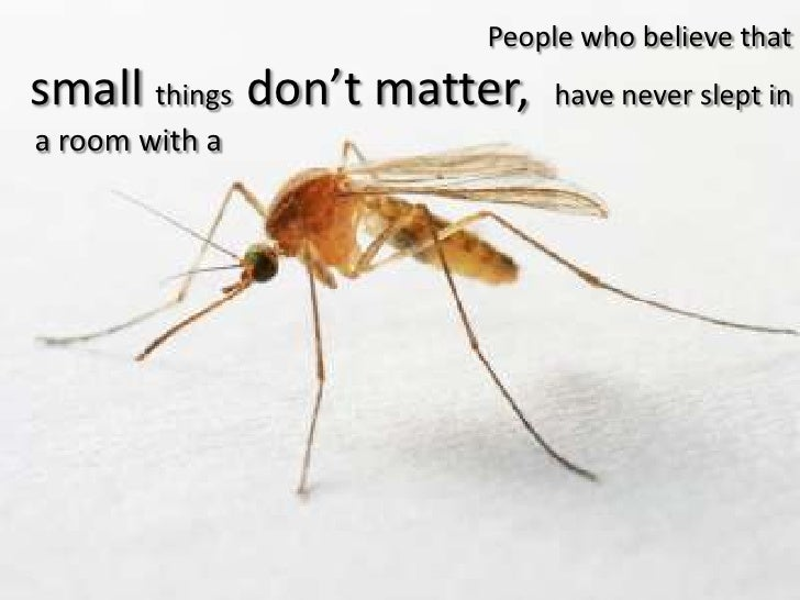 People who believe that small things  don't matter,  have never slept in <br />a room with a<br />