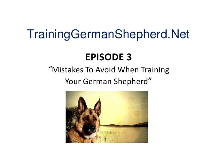 "TrainingGermanShepherd.Net<br />EPISODE 3""Mistakes To Avoid When Training Your German Shepherd""<br />"