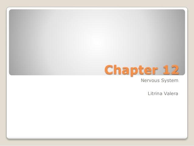 Chapter 12 Nervous System Litrina Valera