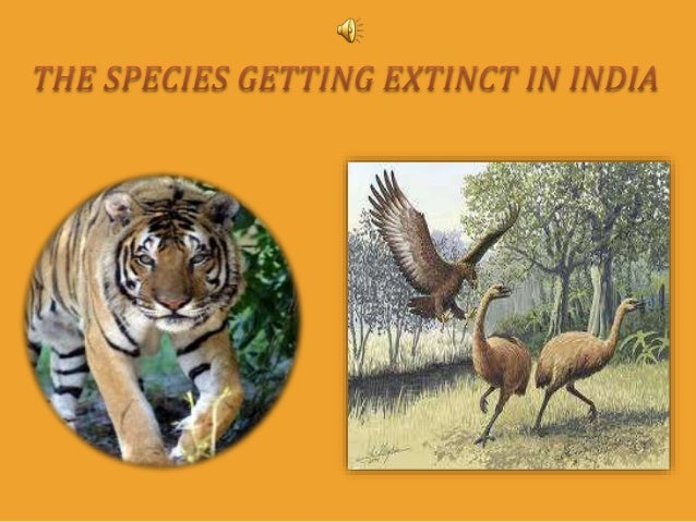 Endangered Plants in India