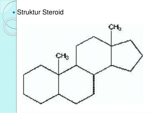 senyawa steroid sebagai antibakteri