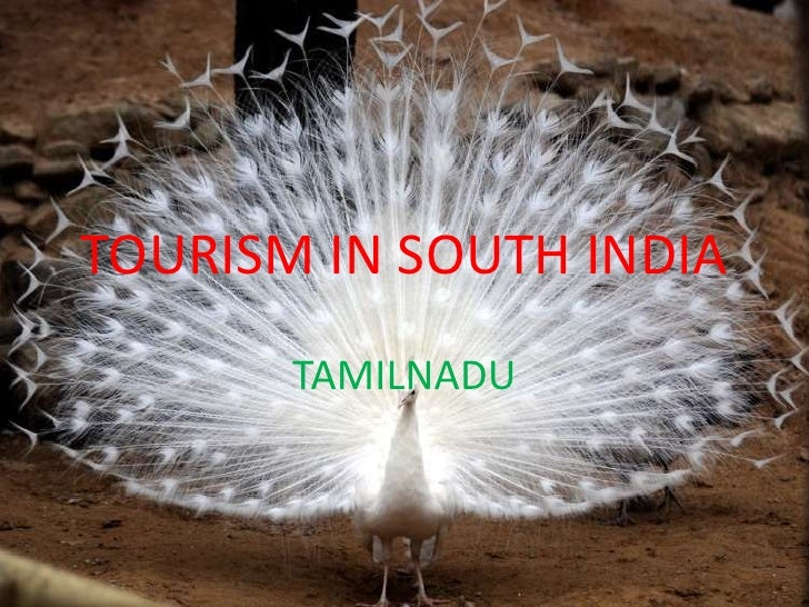 TOURISM IN SOUTH INDIA<br />TAMILNADU<br />