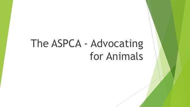 The ASPCA - Advocating for Animals