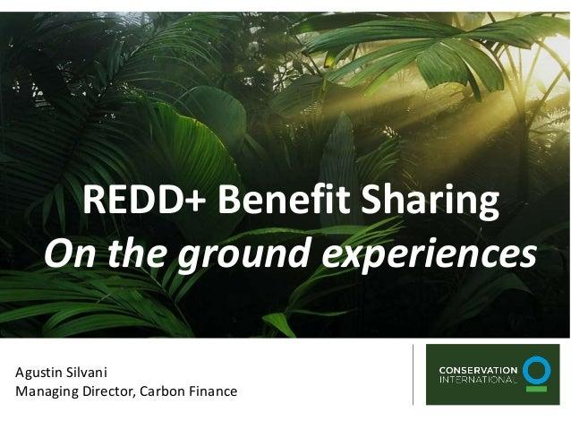 REDD+ Benefit Sharing    On the ground experiencesAgustin SilvaniManaging Director, Carbon Finance
