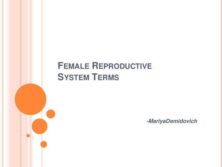 Female Reproductive System Terms<br />-MariyaDemidovich<br />