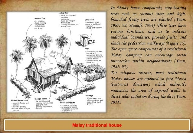 In Malay house compounds, crop-bearing trees such as coconut trees and highbranched fruity trees are planted (Yuan, 1987: ...