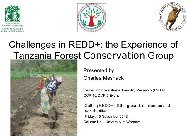 Challenges in REDD+: the Experience of Tanzania Forest Conservation Group Presented by Charles Meshack Center for Internat...