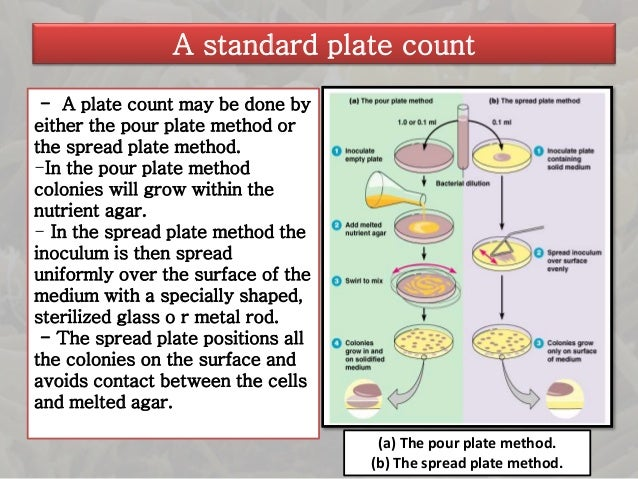 counting cells using the pour plate method essay The purpose of the spread-plate technique is to grow and isolate colonies of cells are broken to pieces what is the purpose of the pour plate technique.