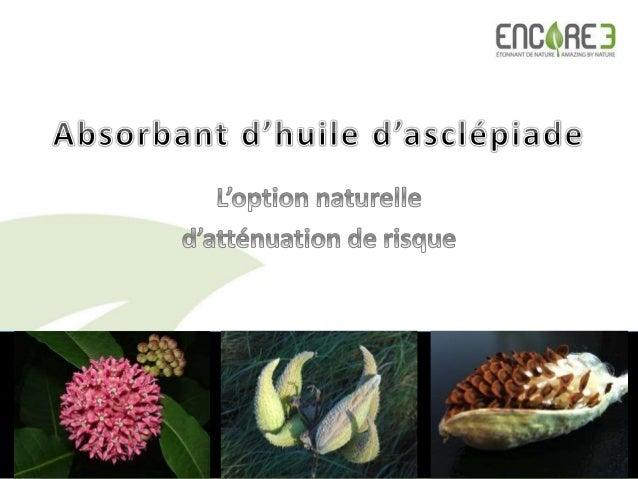L'asclépiade, une plante indigène d'Amérique aux propriétés extraordinaires  Se retrouve partout au Canada, aux É-U et au...