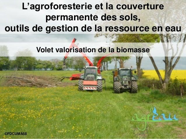 L'agroforesterie et la couverture permanente des sols, outils de gestion de la ressource en eau ©FDCUMA58 Volet valorisati...