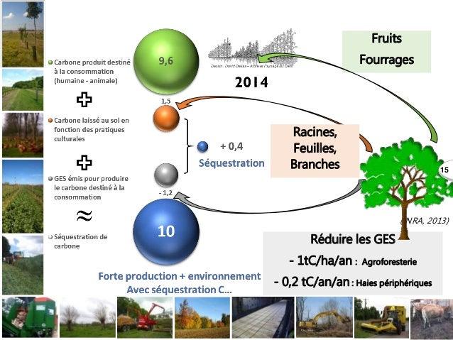 Fruits Fourrages Réduire les GES - 1tC/ha/an : Agroforesterie - 0,2 tC/an/an : Haies périphériques (INRA, 2013) Racines, F...