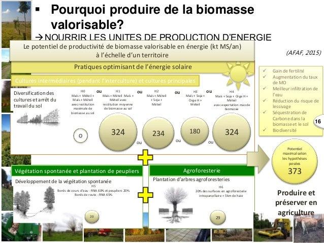  Pourquoi produire de la biomasse valorisable? NOURRIR LES UNITES DE PRODUCTION D'ENERGIE (AFAF, 2015) Cultures interméd...
