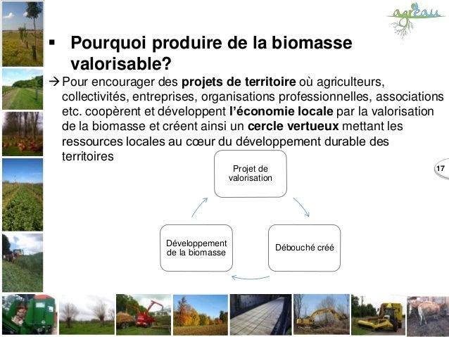  Pourquoi produire de la biomasse valorisable? Pour encourager des projets de territoire où agriculteurs, collectivités,...