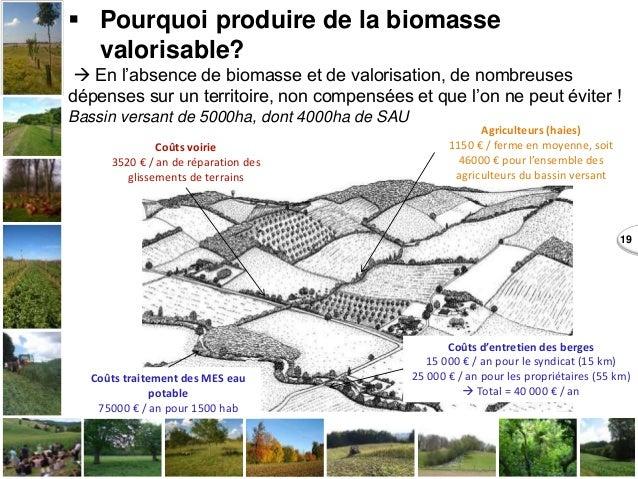 19  Pourquoi produire de la biomasse valorisable?  En l'absence de biomasse et de valorisation, de nombreuses dépenses s...