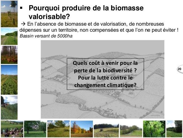 20  Pourquoi produire de la biomasse valorisable?  En l'absence de biomasse et de valorisation, de nombreuses dépenses s...
