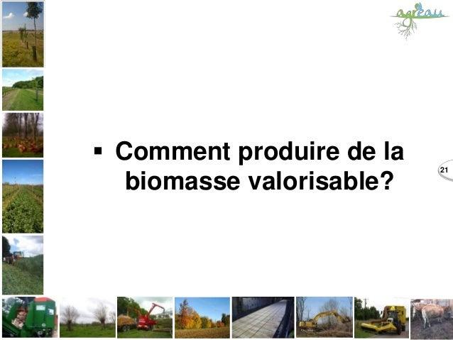  Comment produire de la biomasse valorisable? 21