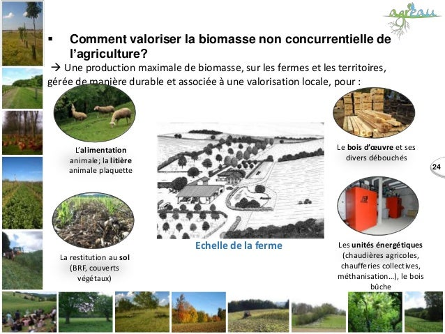24  Comment valoriser la biomasse non concurrentielle de l'agriculture?  Une production maximale de biomasse, sur les fe...