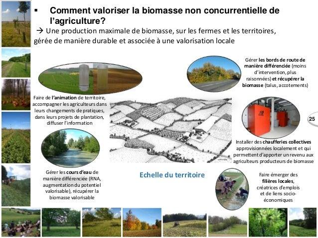 25  Comment valoriser la biomasse non concurrentielle de l'agriculture?  Une production maximale de biomasse, sur les fe...