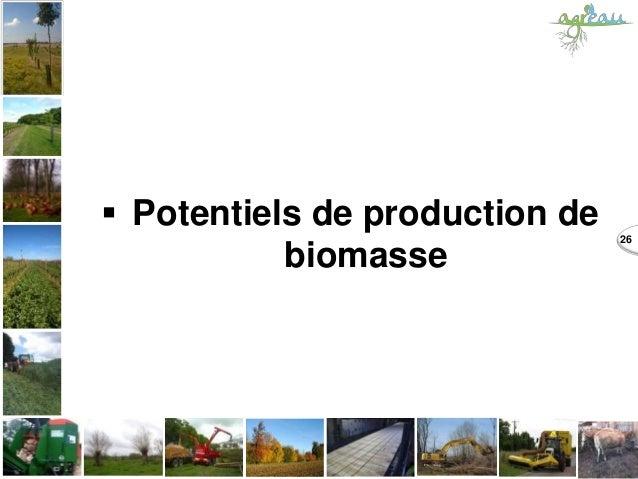  Potentiels de production de biomasse 26