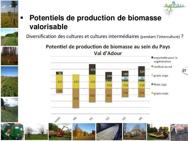  Potentiels de production de biomasse valorisable 27 Diversification des cultures et cultures intermédiaires (pendant l'i...