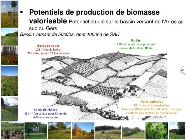 28  Potentiels de production de biomasse valorisable Potentiel étudié sur le bassin versant de l'Arros au sud du Gers Bas...