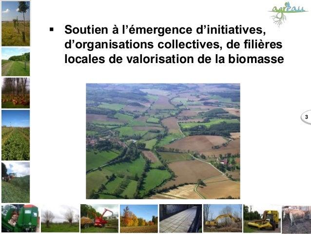 3  Soutien à l'émergence d'initiatives, d'organisations collectives, de filières locales de valorisation de la biomasse