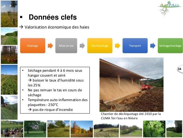 Abattage Mise en tas Déchiquetage Transport Séchage/stockage 34  Données clefs  Valorisation économique des haies • Séch...