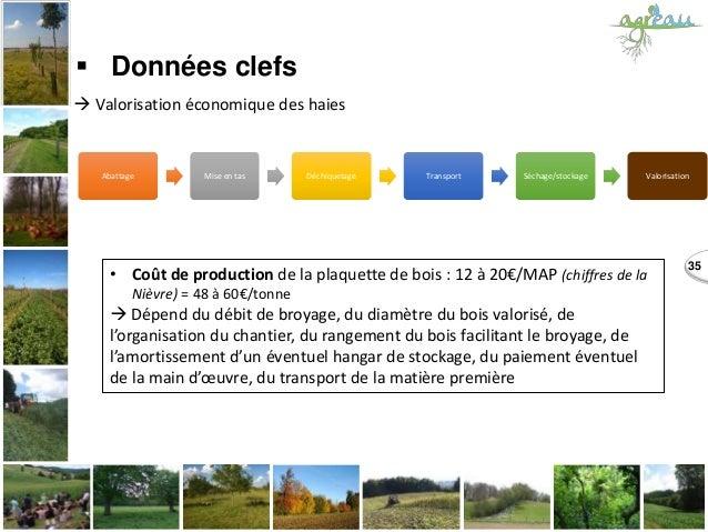 Abattage Mise en tas Déchiquetage Transport Séchage/stockage Valorisation 35  Données clefs  Valorisation économique des...