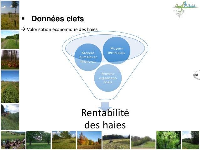 38  Données clefs  Valorisation économique des haies Rentabilité des haies Moyens organisatio nnels Moyens humains et fi...