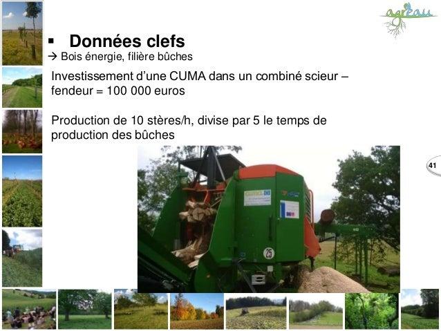 41  Données clefs  Bois énergie, filière bûches Investissement d'une CUMA dans un combiné scieur – fendeur = 100 000 eur...