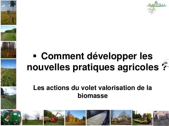  Comment développer les nouvelles pratiques agricoles ? Les actions du volet valorisation de la biomasse 44
