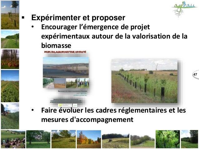  Expérimenter et proposer • Encourager l'émergence de projet expérimentaux autour de la valorisation de la biomasse • Fai...