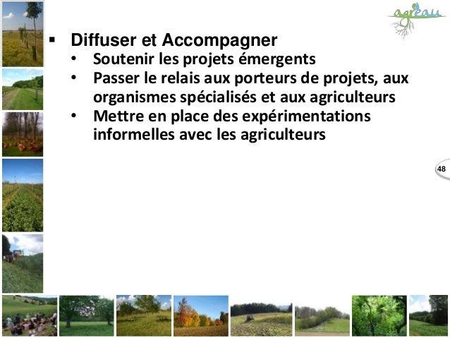 48  Diffuser et Accompagner • Soutenir les projets émergents • Passer le relais aux porteurs de projets, aux organismes s...