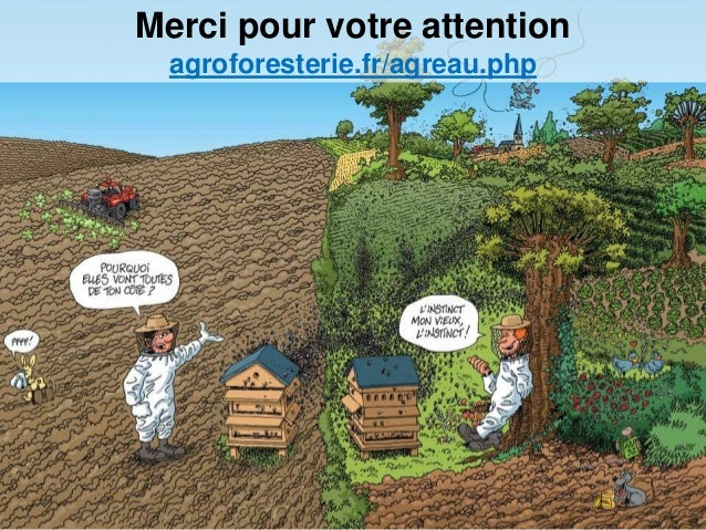Merci pour votre attention agroforesterie.fr/agreau.php
