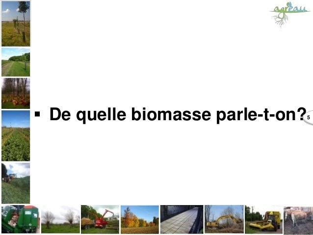  De quelle biomasse parle-t-on?5