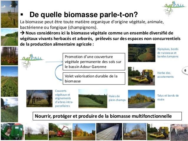  De quelle biomasse parle-t-on? La biomasse peut être toute matière organique d'origine végétale, animale, bactérienne ou...