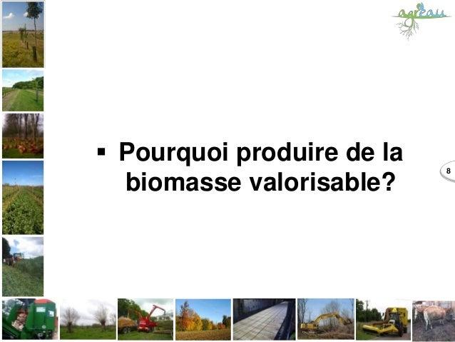 Pourquoi produire de la biomasse valorisable? 8