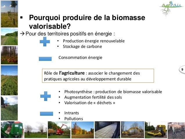  Pourquoi produire de la biomasse valorisable? Pour des territoires positifs en énergie : 9 • Production énergie renouve...