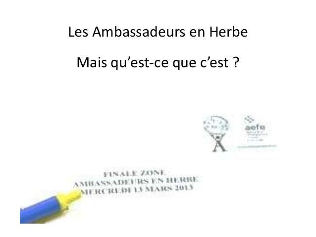 Les Ambassadeurs en HerbeMais qu'est-ce que c'est ?