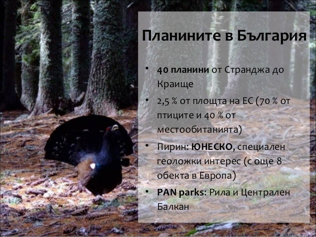 Туризъм в планините - законосъобразност и целесъобразност - Форум Планини, Зелени дни, София, 8 април Slide 2