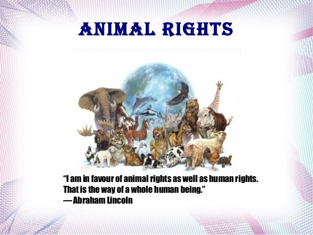 "AnimAl rights  ""I am in favour of animal rights as well as human rights. That is the way of a whole human being."" ― Abraha..."