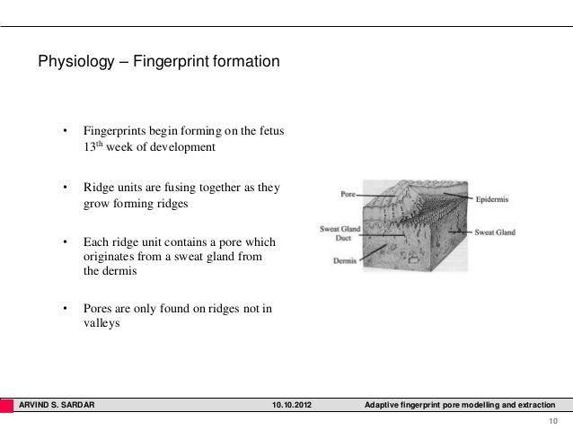 finger print pore extraction methods