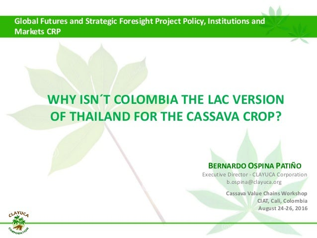 Global Futures and Strategic Foresight Project Policy, Institutions and Markets CRP Cassava Value Chains Workshop CIAT, Ca...