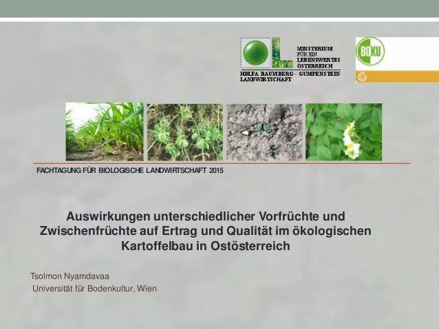 FACHTAGUNGFÜR BIOLOGISCHE LANDWIRTSCHAFT 2015 Auswirkungen unterschiedlicher Vorfrüchte und Zwischenfrüchte auf Ertrag und...